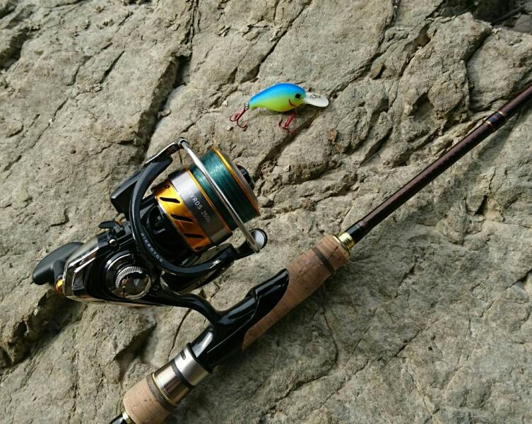 ニゴイ釣りにオススメのスピニングリール