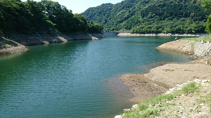 ニゴイの釣れる場所:ダム湖