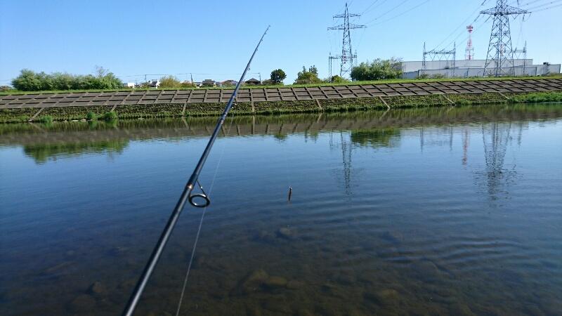 ニゴイの釣れる場所:河川の中流域