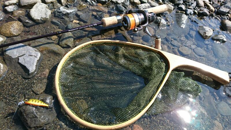 ニゴイ釣りにオススメのロッド
