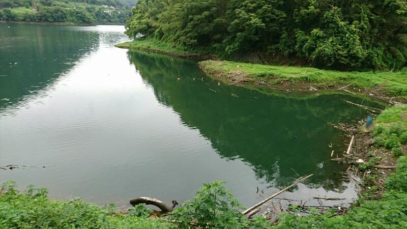 ブルーギルの釣れる場所の例(津久井湖)